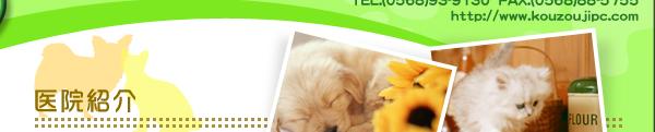 愛知県 動物病院 求人情報 トリマー ペットホテル 動物看護士 高蔵寺ペットクリニック
